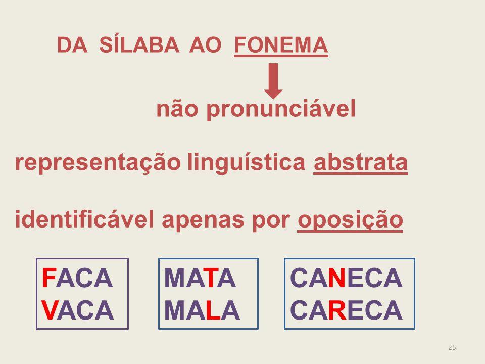 FACA VACA MATA MALA CANECA CARECA não pronunciável