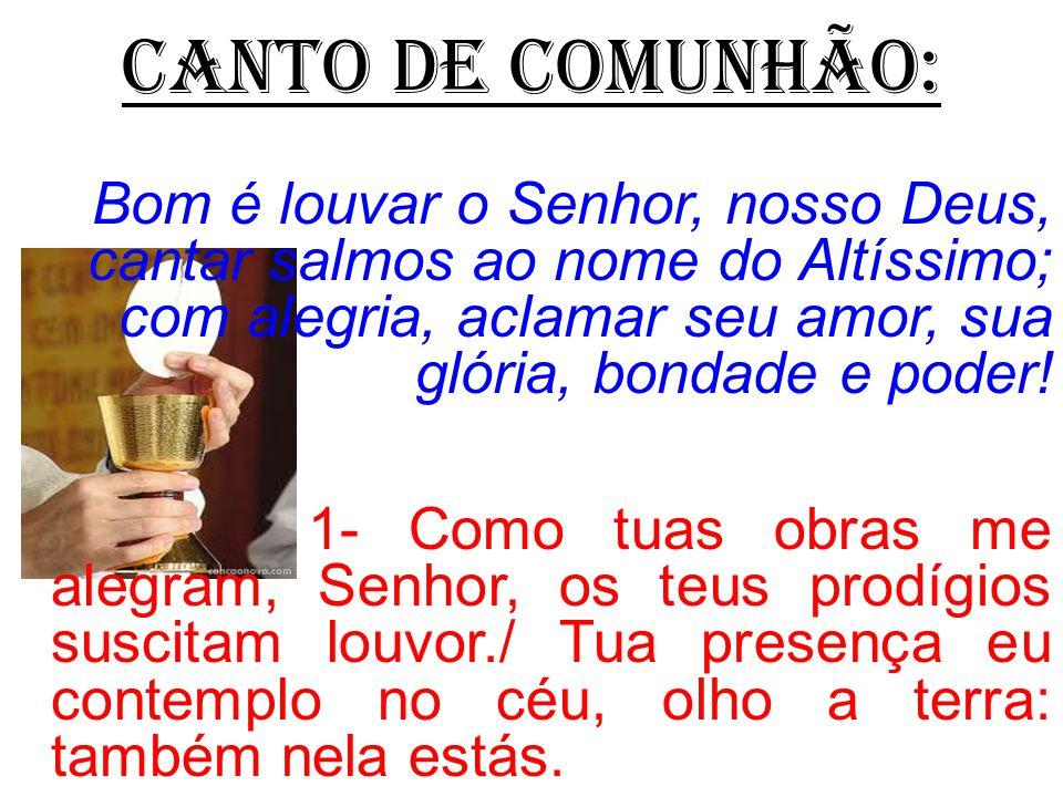 BEM-VINDOS AO 12º DOMINGO DO TEMPO COMUM!