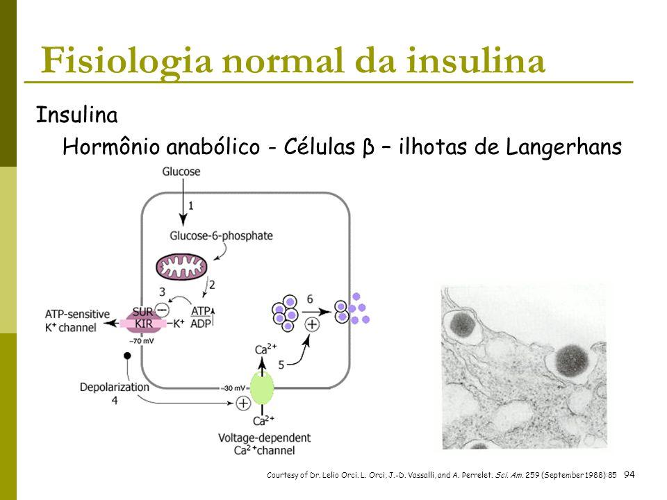 Fisiologia normal da insulina