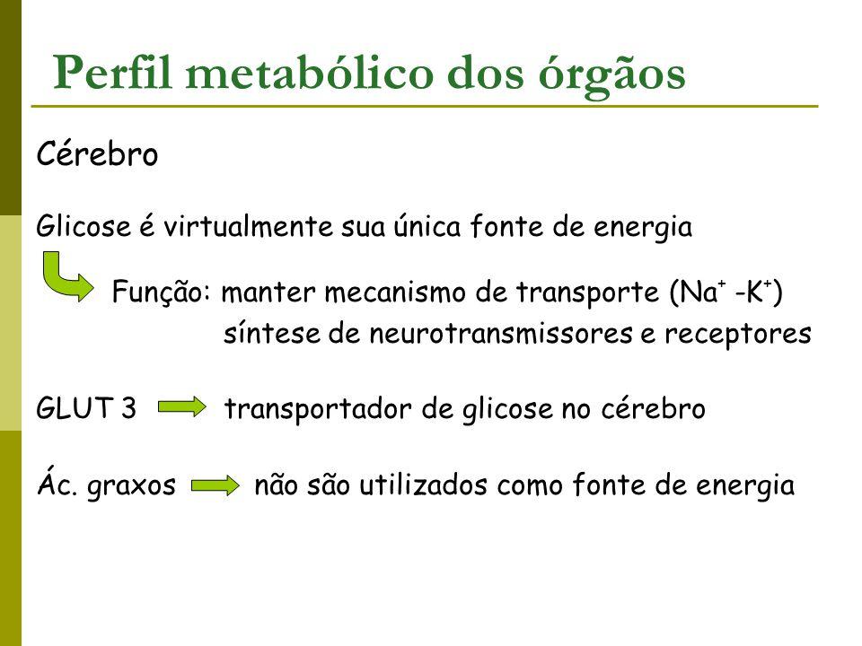 Perfil metabólico dos órgãos