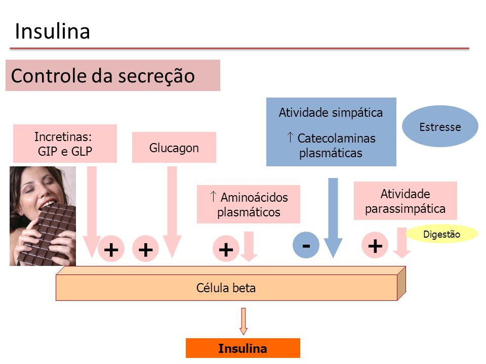 Insulina Controle da secreção - + + + + Estresse Atividade simpática