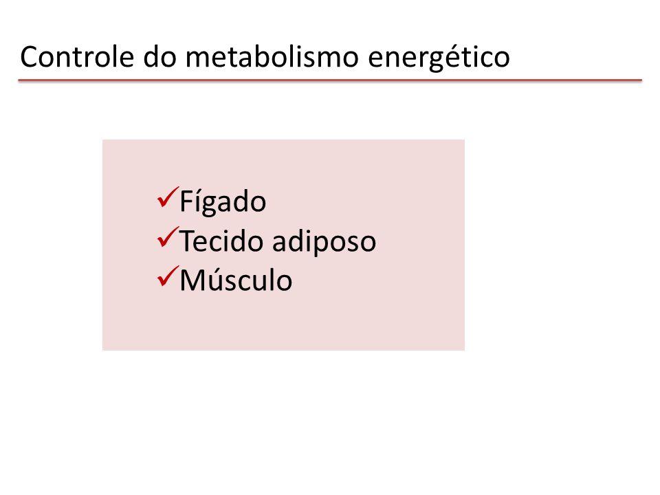 Controle do metabolismo energético