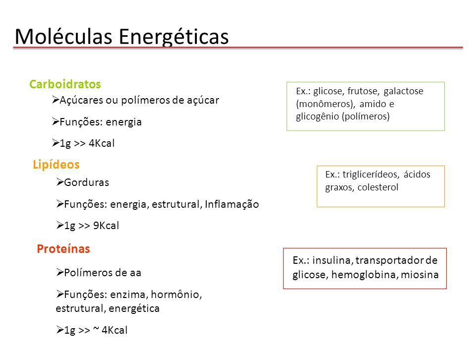 Moléculas Energéticas
