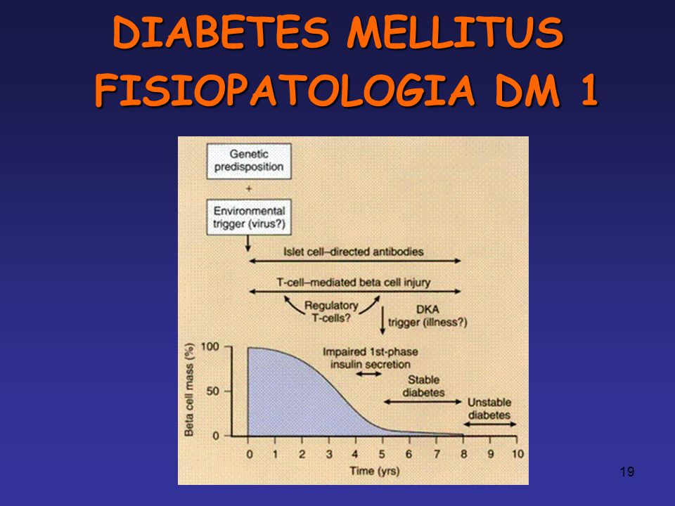 DIABETES MELLITUS FISIOPATOLOGIA DM 1