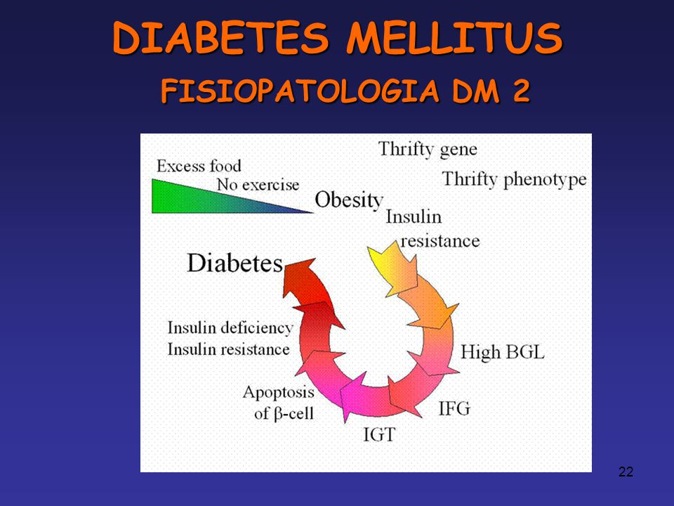 DIABETES MELLITUS FISIOPATOLOGIA DM 2