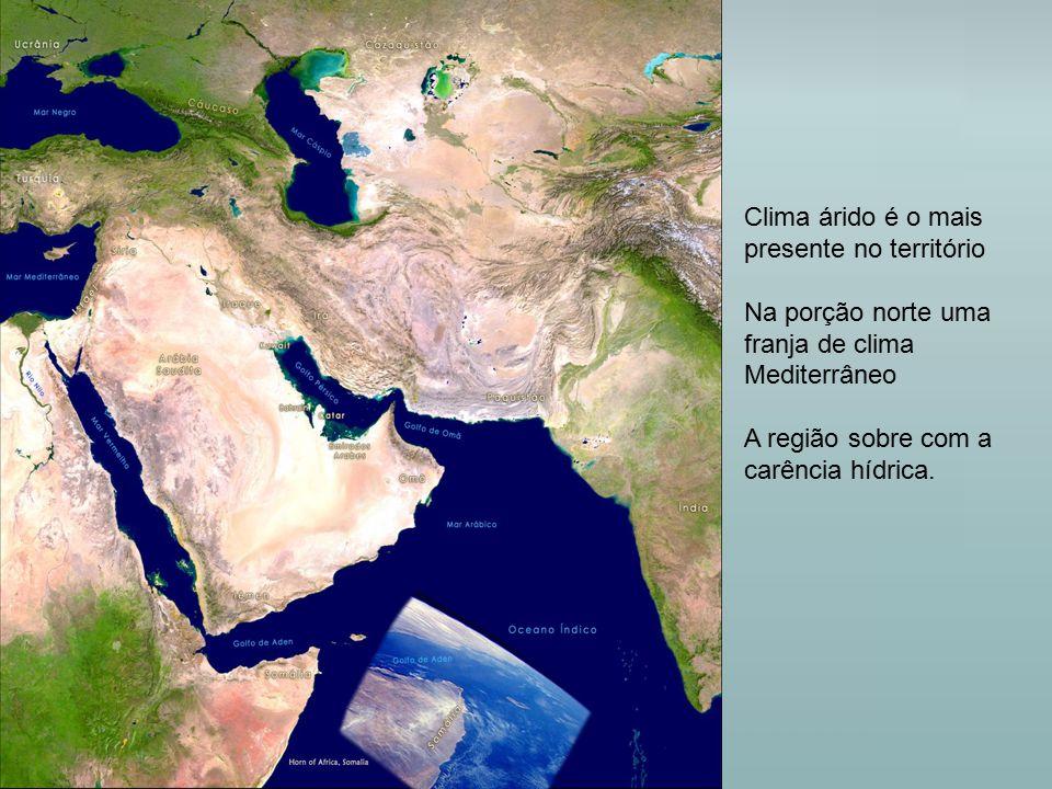 Clima árido é o mais presente no território
