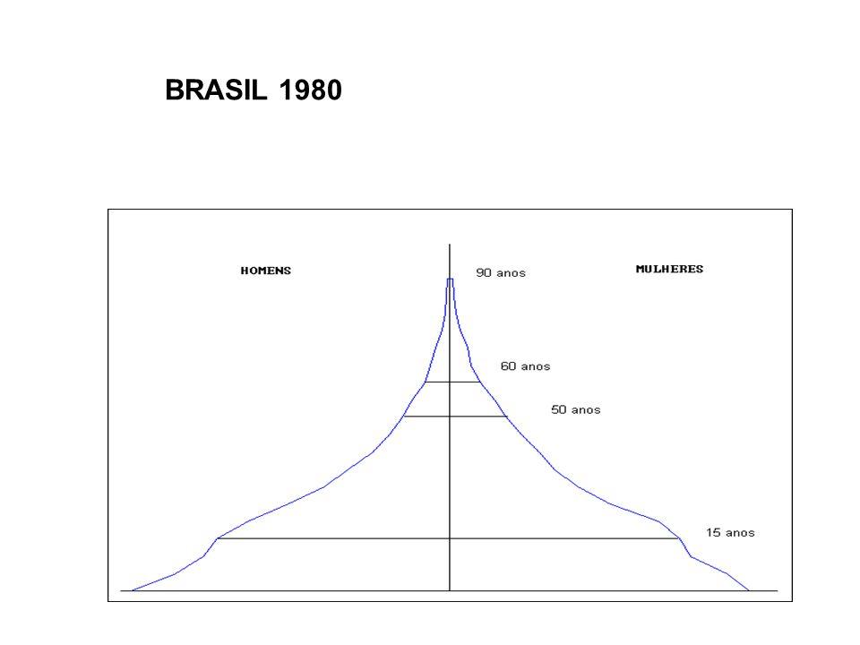 BRASIL 1980