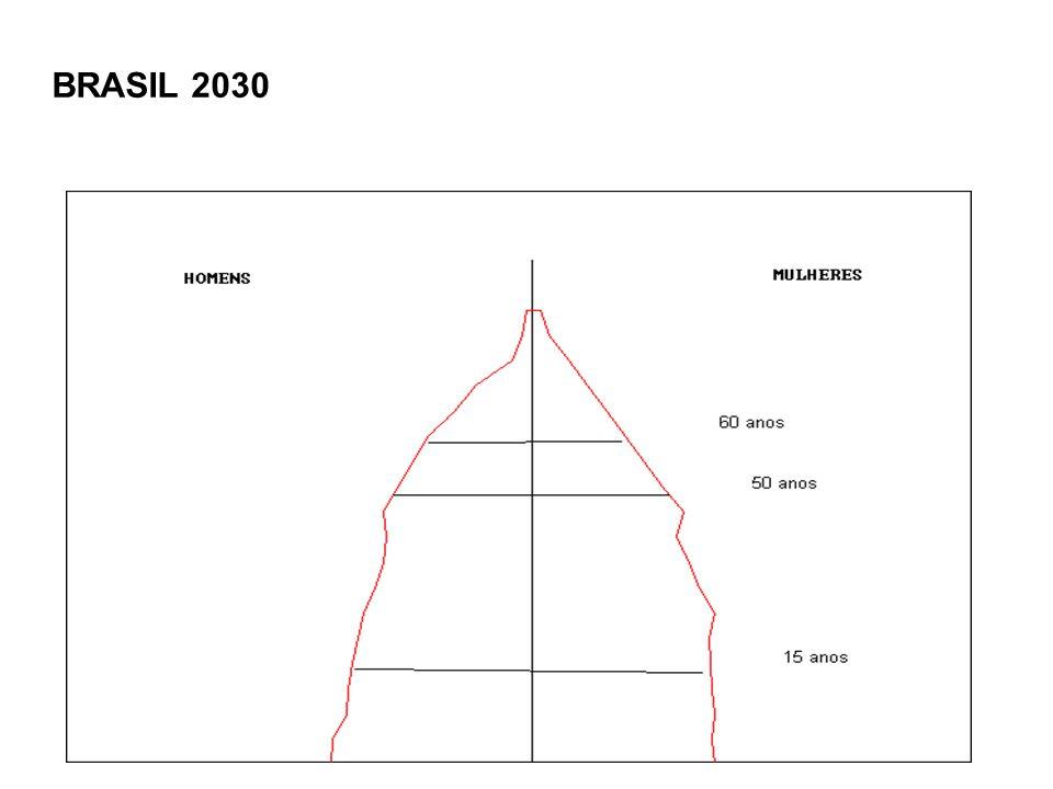 BRASIL 2030