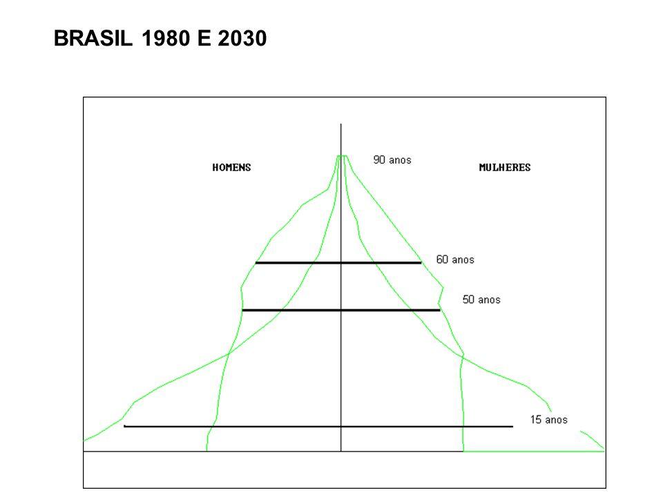 BRASIL 1980 E 2030