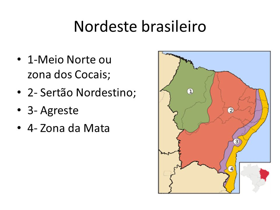 Nordeste brasileiro 1-Meio Norte ou zona dos Cocais;