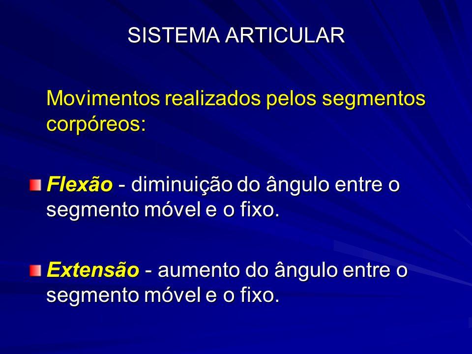 SISTEMA ARTICULAR Movimentos realizados pelos segmentos corpóreos: Flexão - diminuição do ângulo entre o segmento móvel e o fixo.