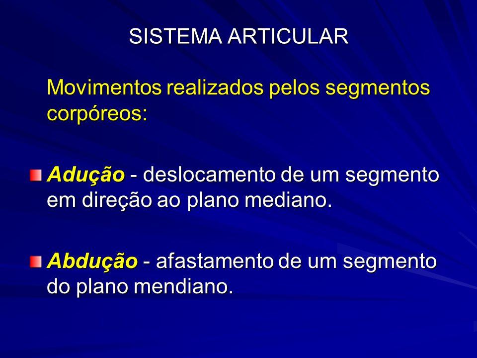 SISTEMA ARTICULAR Movimentos realizados pelos segmentos corpóreos: Adução - deslocamento de um segmento em direção ao plano mediano.