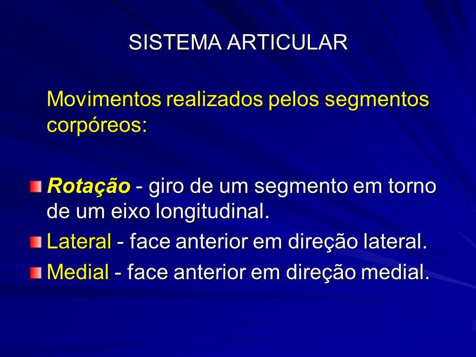 SISTEMA ARTICULAR Movimentos realizados pelos segmentos corpóreos: Rotação - giro de um segmento em torno de um eixo longitudinal.