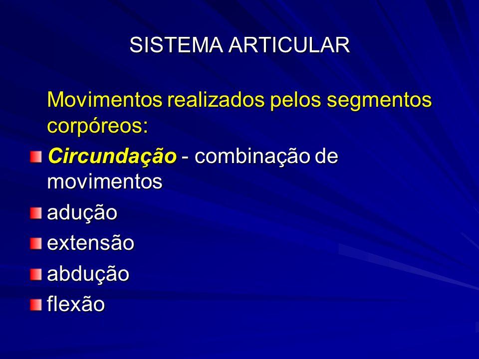 SISTEMA ARTICULAR Movimentos realizados pelos segmentos corpóreos: Circundação - combinação de movimentos.