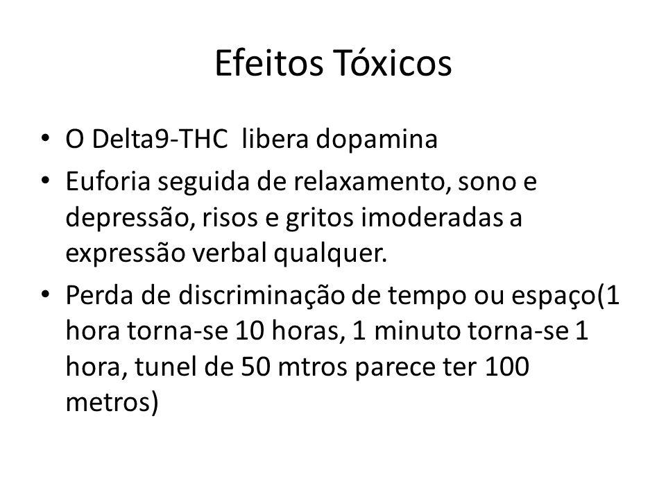 Efeitos Tóxicos O Delta9-THC libera dopamina
