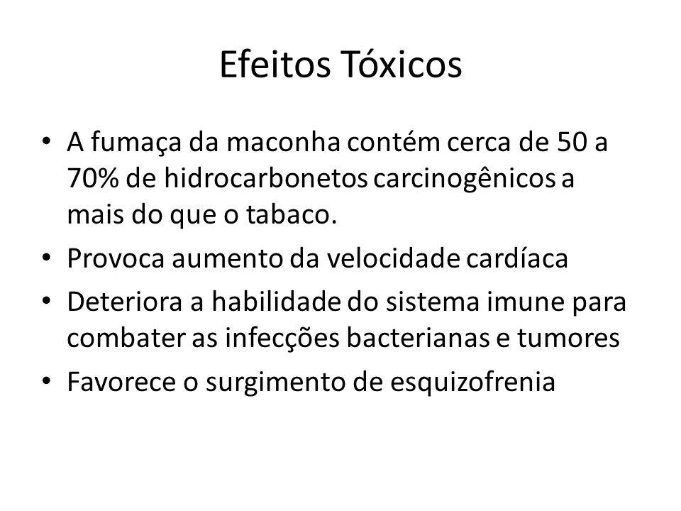 Efeitos Tóxicos A fumaça da maconha contém cerca de 50 a 70% de hidrocarbonetos carcinogênicos a mais do que o tabaco.