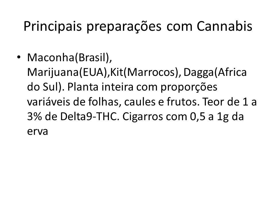 Principais preparações com Cannabis