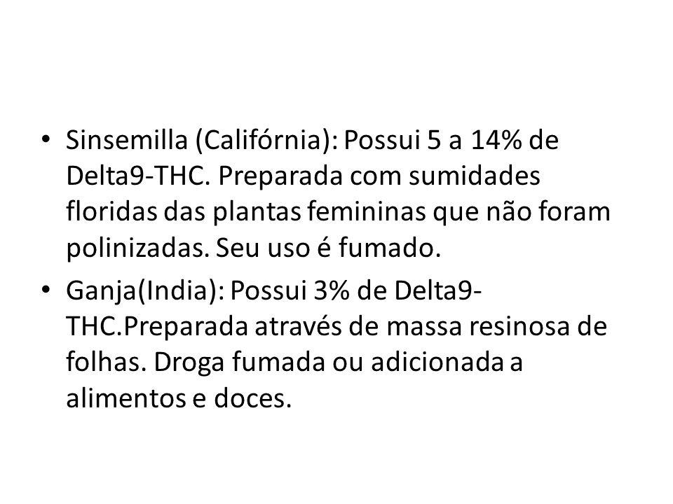 Sinsemilla (Califórnia): Possui 5 a 14% de Delta9-THC