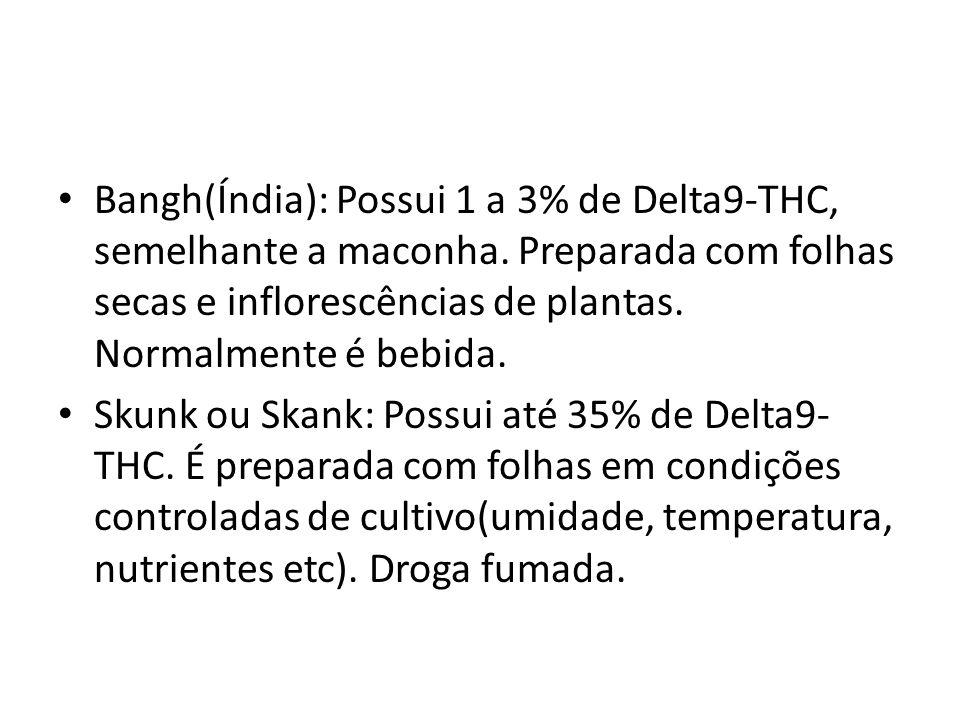 Bangh(Índia): Possui 1 a 3% de Delta9-THC, semelhante a maconha
