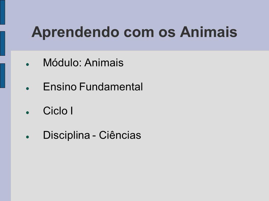 Aprendendo com os Animais