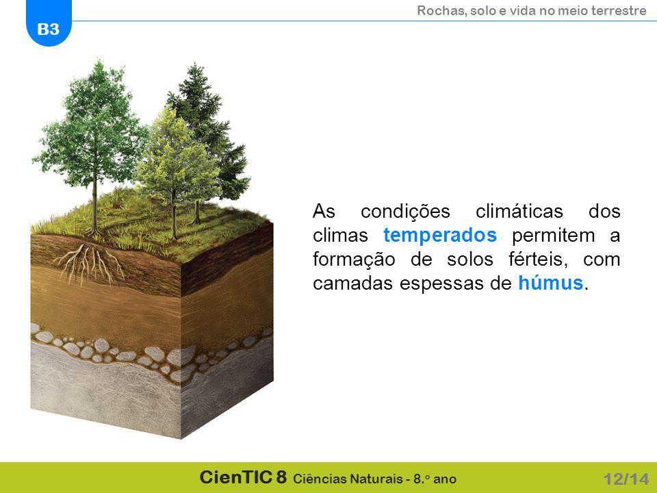 As condições climáticas dos climas temperados permitem a formação de solos férteis, com camadas espessas de húmus.