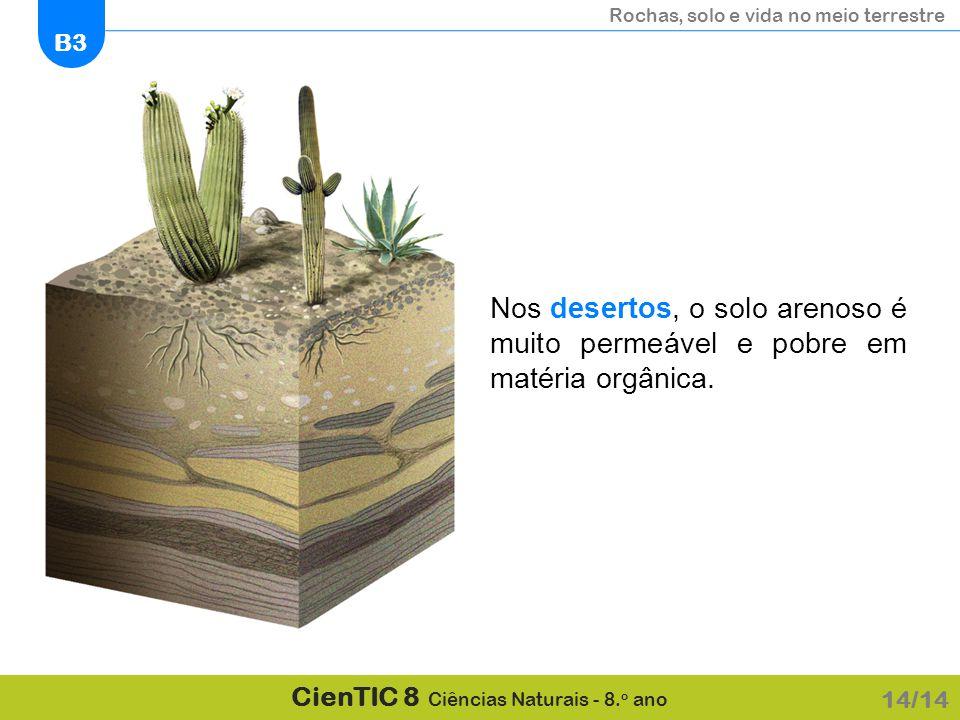 Nos desertos, o solo arenoso é muito permeável e pobre em matéria orgânica.