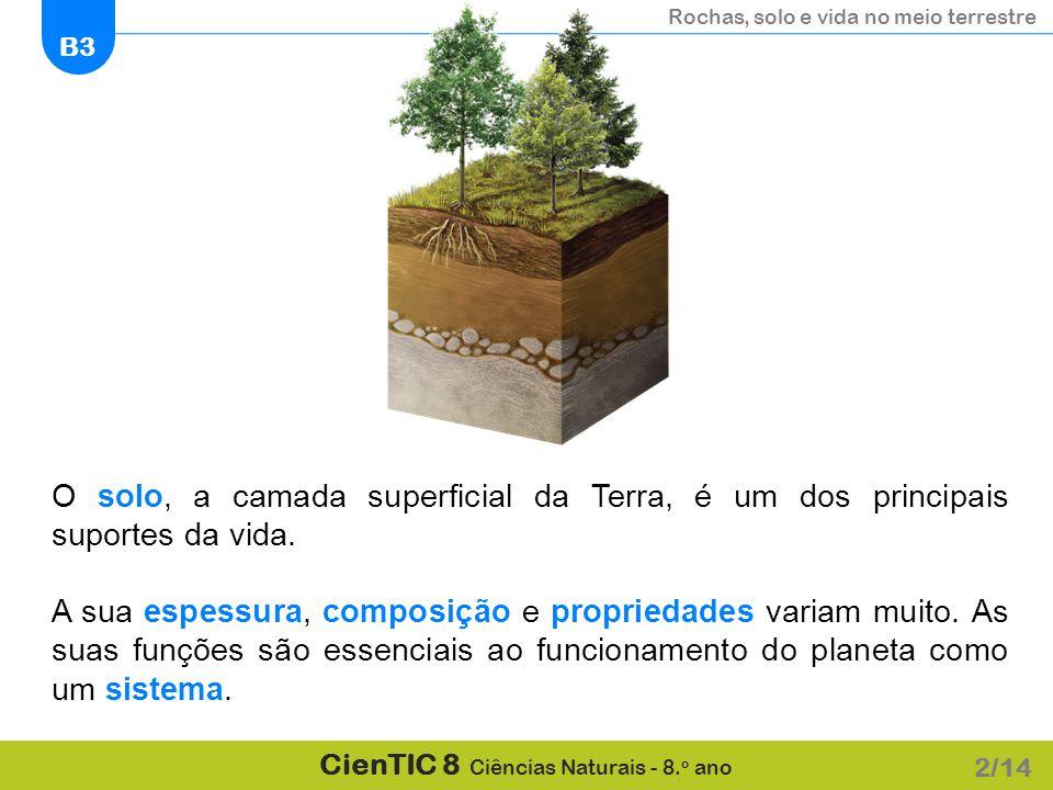 O solo, a camada superficial da Terra, é um dos principais suportes da vida.