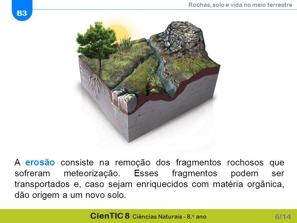 A erosão consiste na remoção dos fragmentos rochosos que sofreram meteorização. Esses fragmentos podem ser transportados e, caso sejam enriquecidos com matéria orgânica, dão origem a um novo solo.