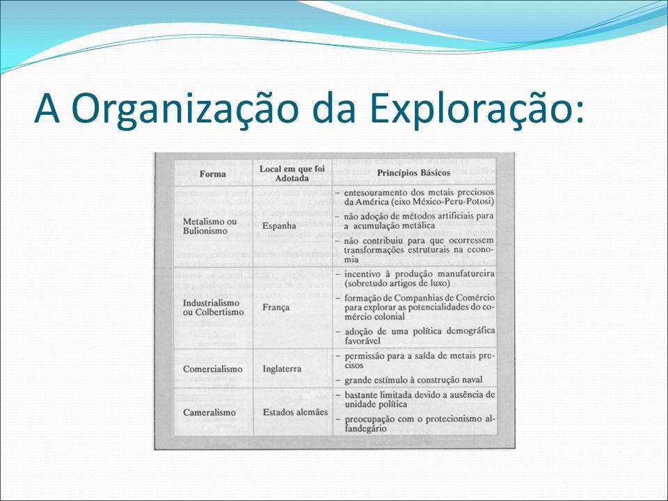 A Organização da Exploração: