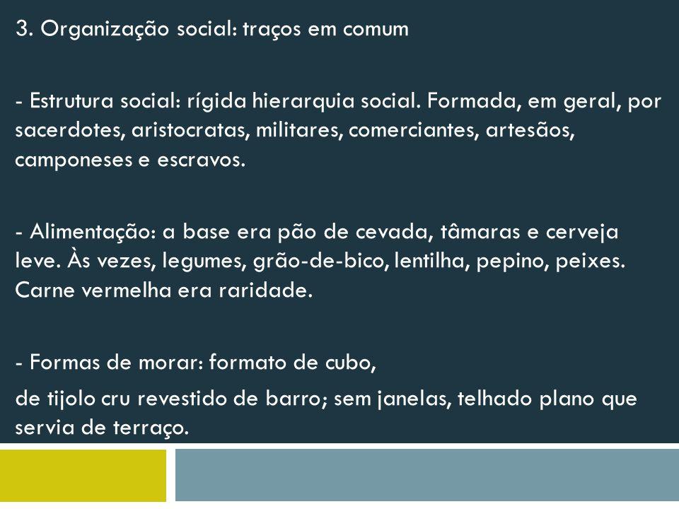 3. Organização social: traços em comum