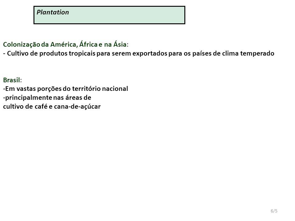 Plantation Colonização da América, África e na Ásia: - Cultivo de produtos tropicais para serem exportados para os países de clima temperado.