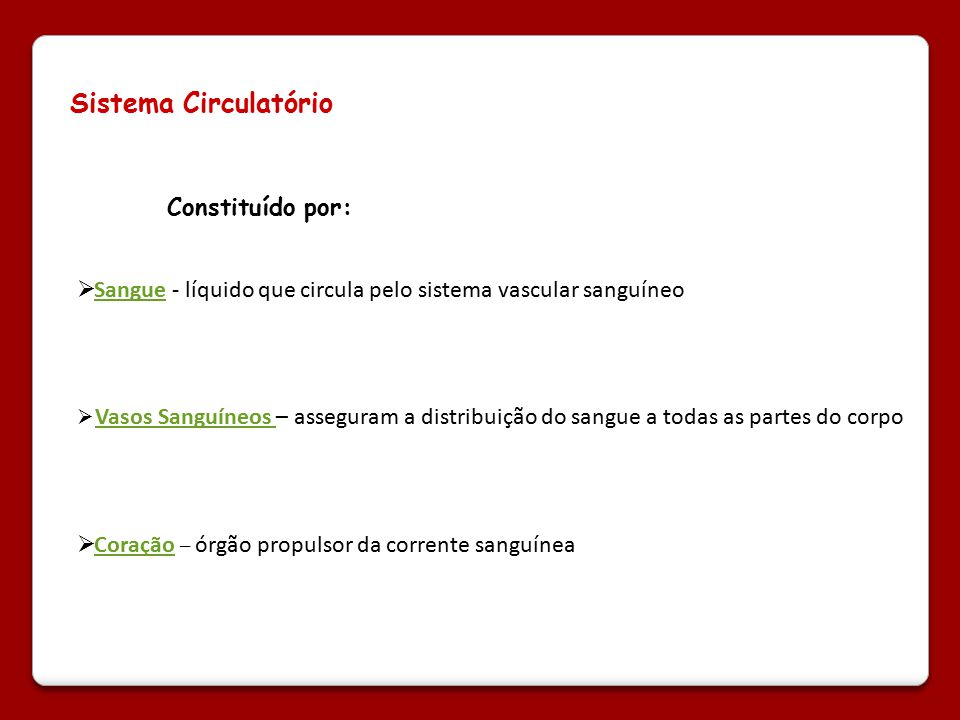Sistema Circulatório Constituído por: