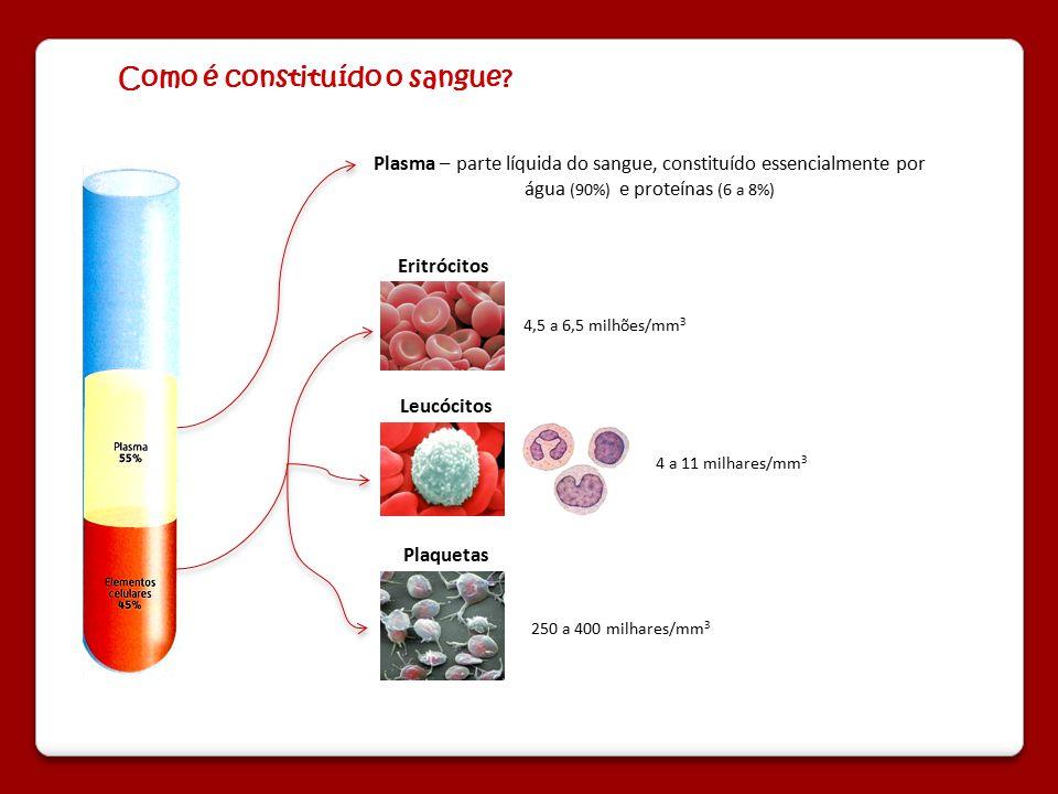 Como é constituído o sangue