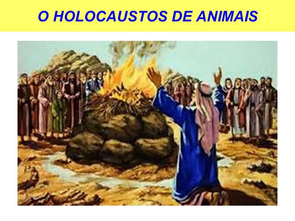 O HOLOCAUSTOS DE ANIMAIS