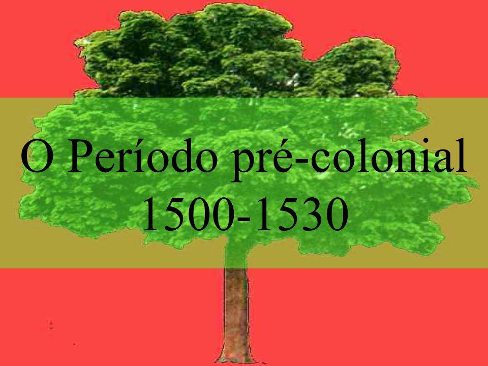 O Período pré-colonial 1500-1530