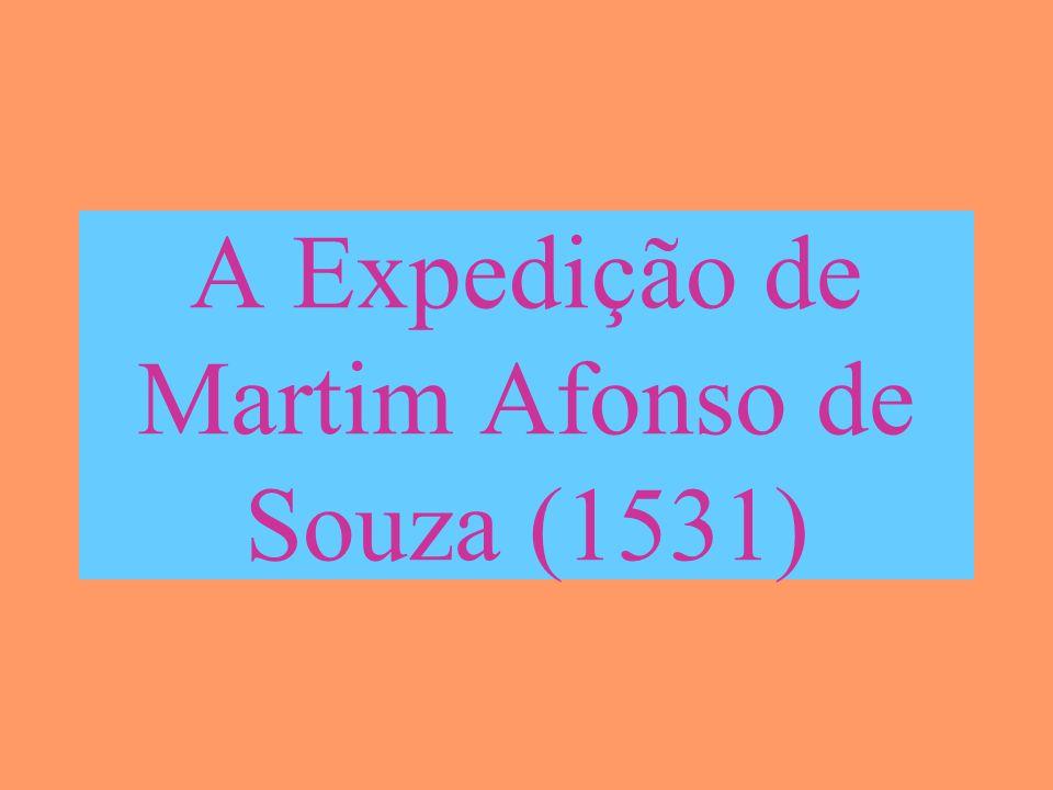 A Expedição de Martim Afonso de Souza (1531)