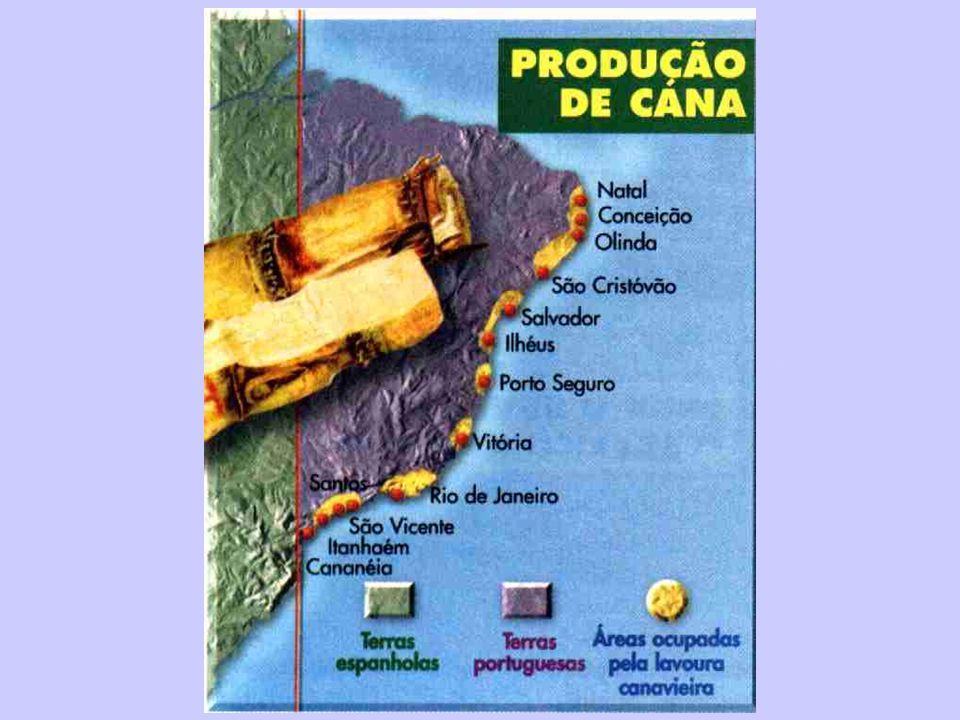 Áreas produtoras