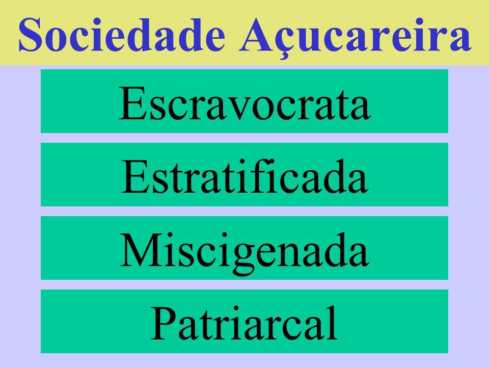 Sociedade Açucareira Escravocrata Estratificada Miscigenada Patriarcal