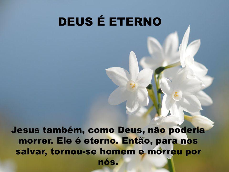 DEUS É ETERNO Jesus também, como Deus, não poderia morrer.