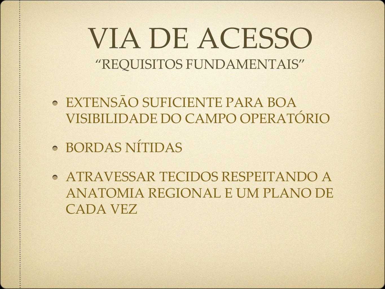 VIA DE ACESSO REQUISITOS FUNDAMENTAIS