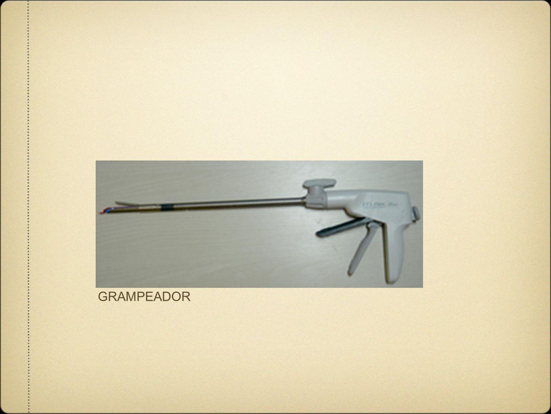 GRAMPEADOR