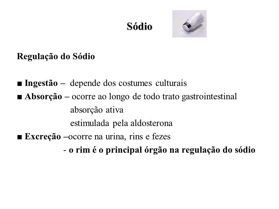 Sódio Regulação do Sódio ■ Ingestão – depende dos costumes culturais