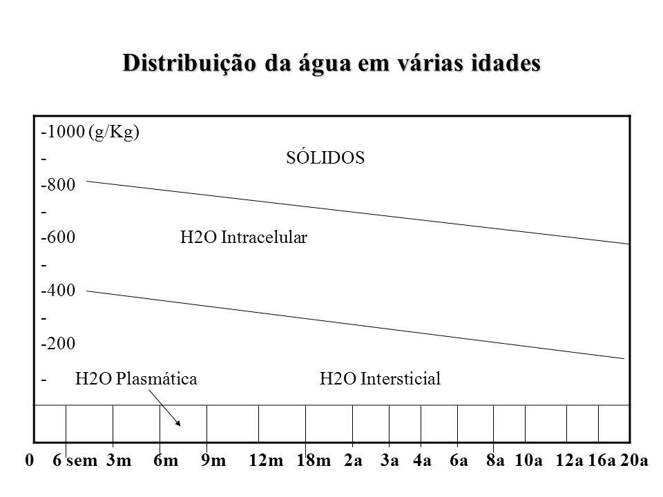 Distribuição da água em várias idades