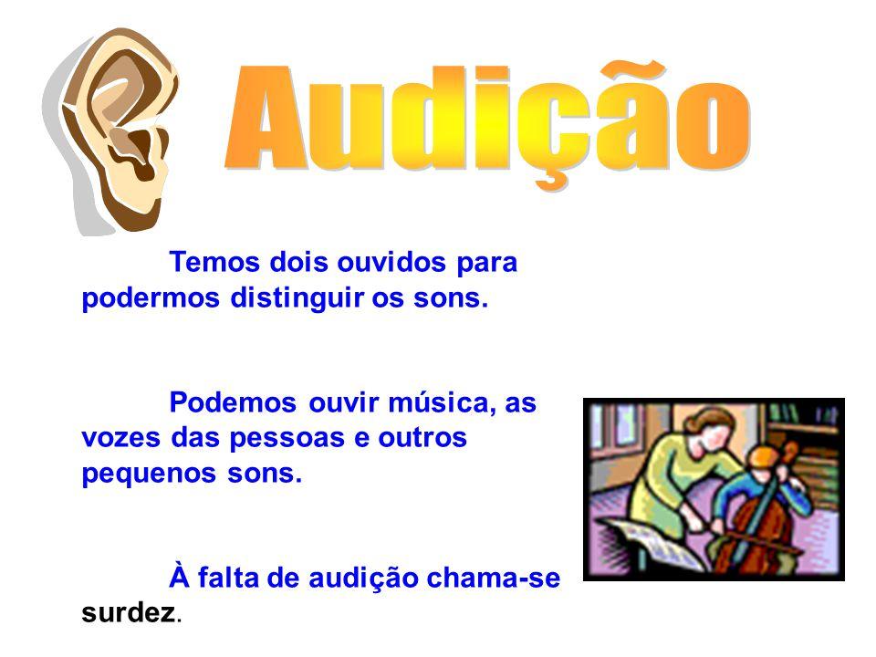 Audição Temos dois ouvidos para podermos distinguir os sons. Podemos ouvir música, as vozes das pessoas e outros pequenos sons.