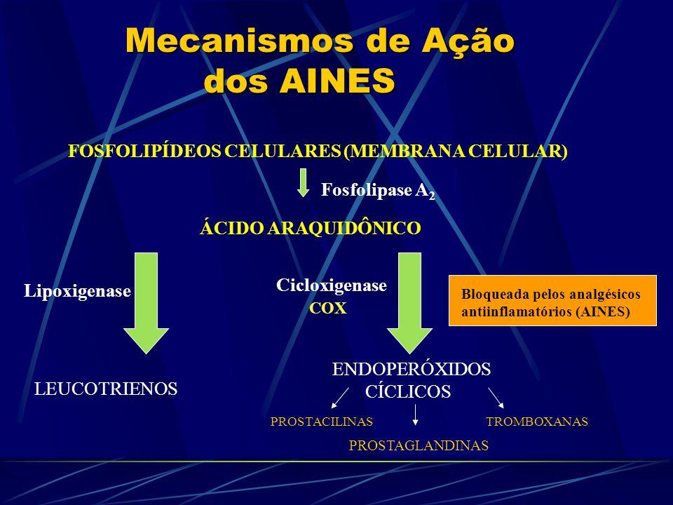 Mecanismos de Ação dos AINES