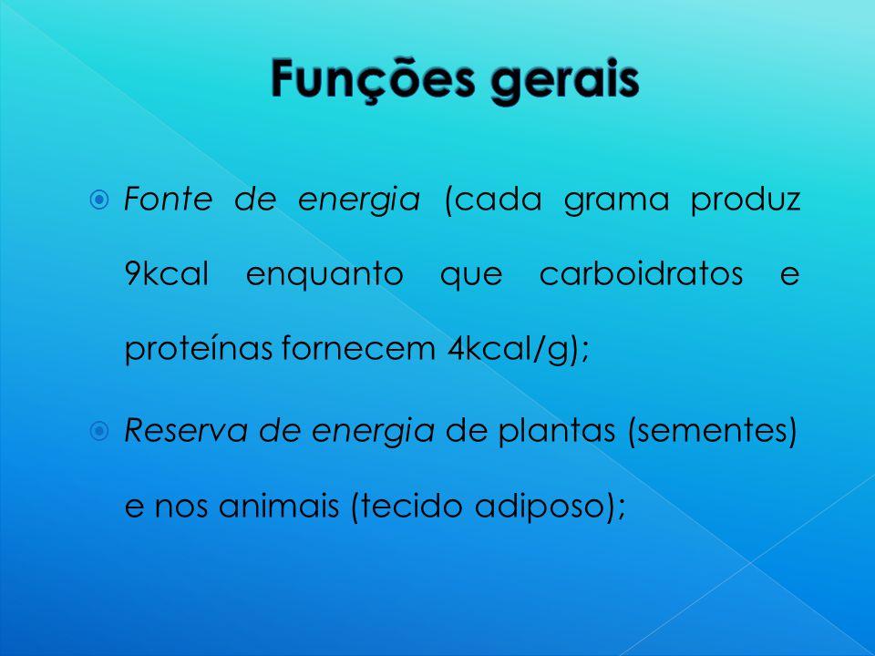 Funções gerais Fonte de energia (cada grama produz 9kcal enquanto que carboidratos e proteínas fornecem 4kcal/g);
