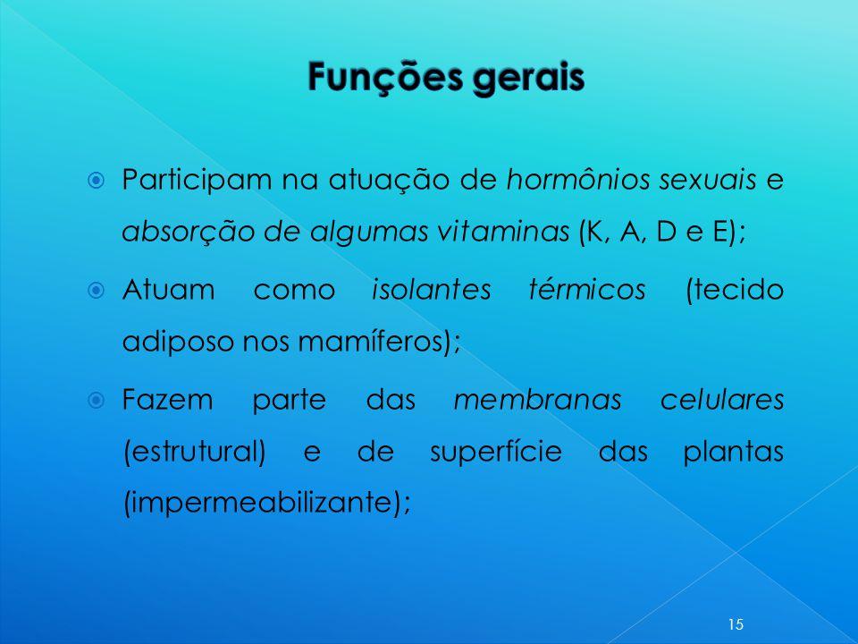 Funções gerais Participam na atuação de hormônios sexuais e absorção de algumas vitaminas (K, A, D e E);