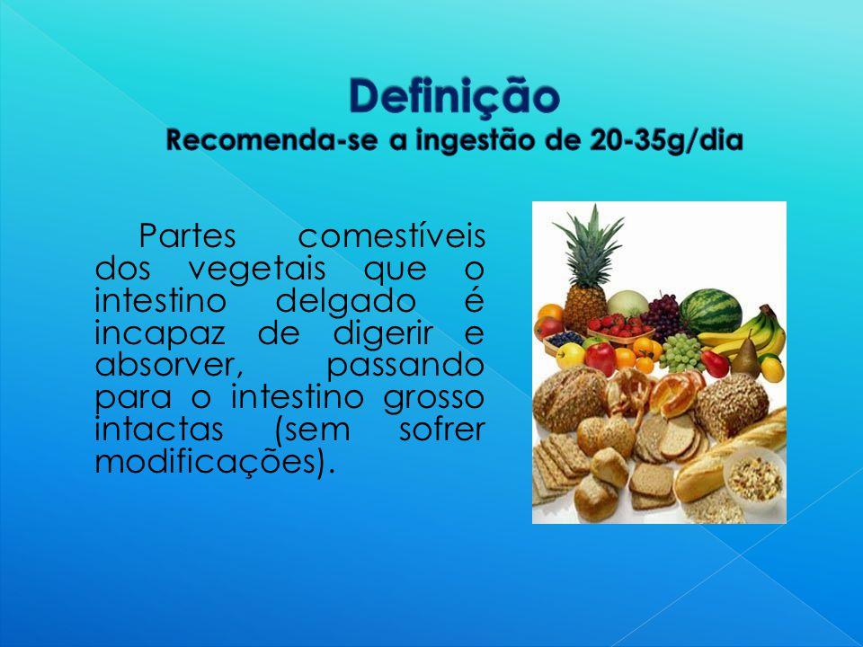 Definição Recomenda-se a ingestão de 20-35g/dia