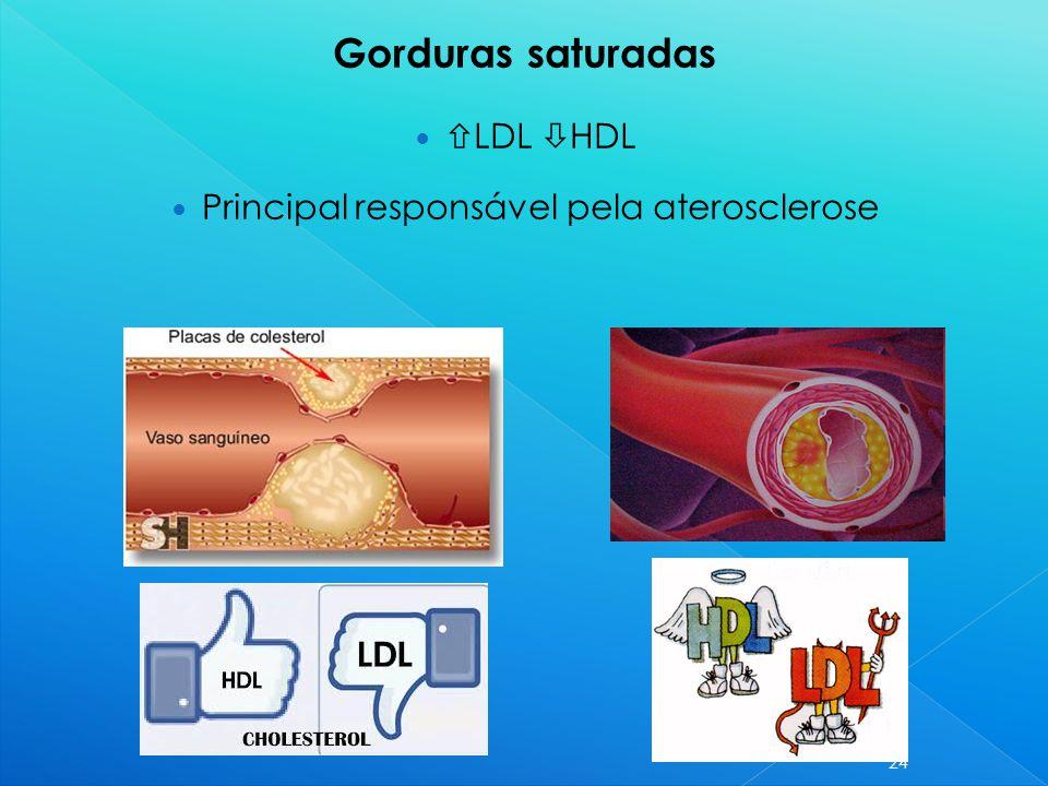 Principal responsável pela aterosclerose