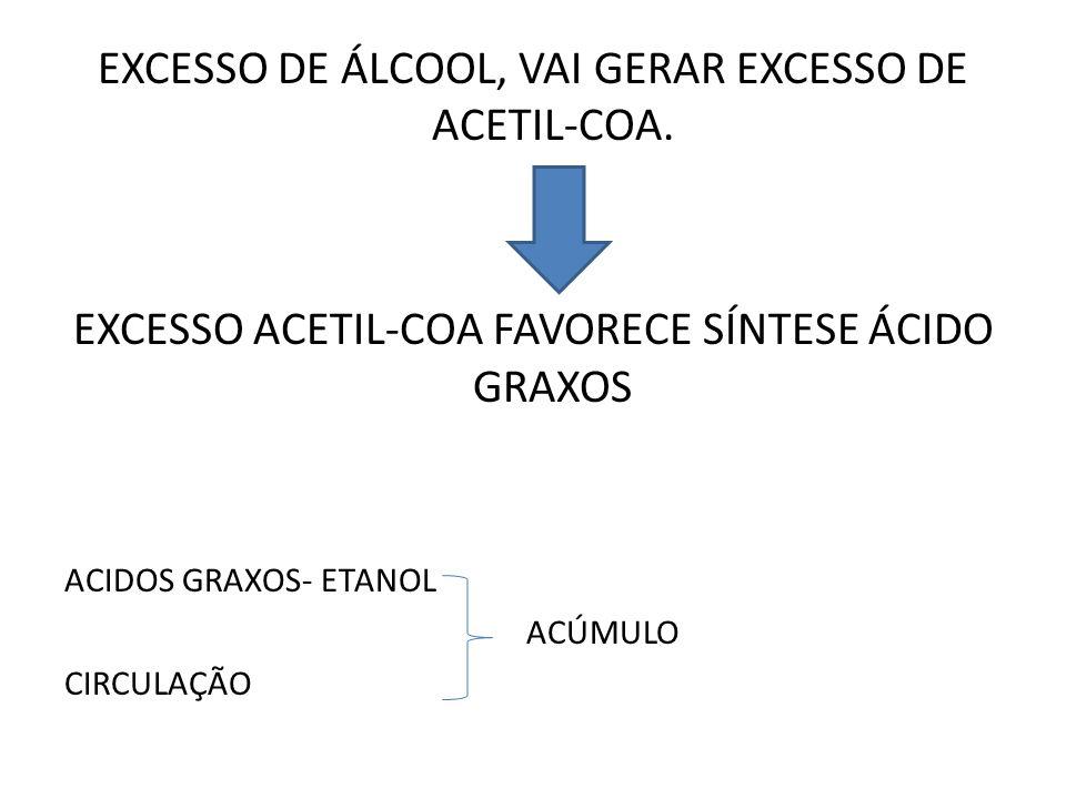 EXCESSO DE ÁLCOOL, VAI GERAR EXCESSO DE ACETIL-COA.